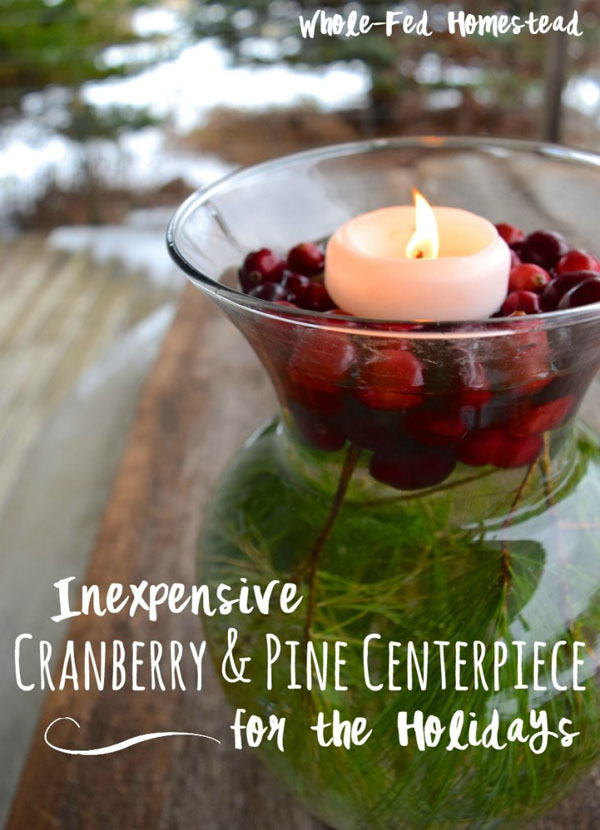 cranberry-christmas-decorations-16