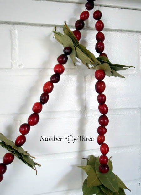 cranberry-christmas-decorations-24