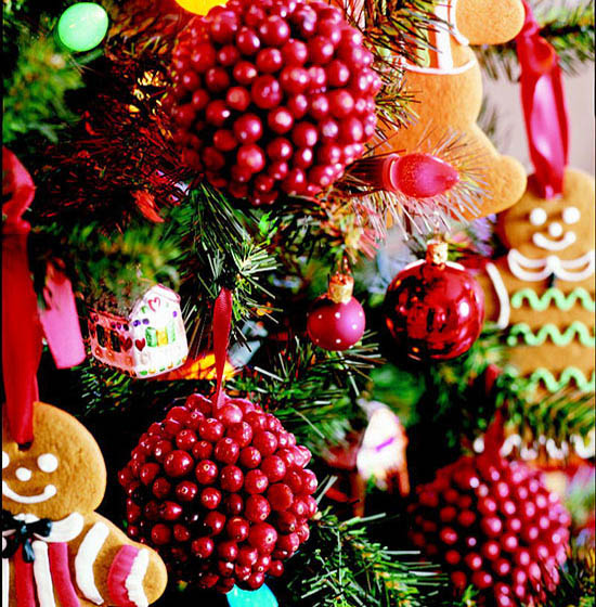 cranberry-christmas-decorations-28