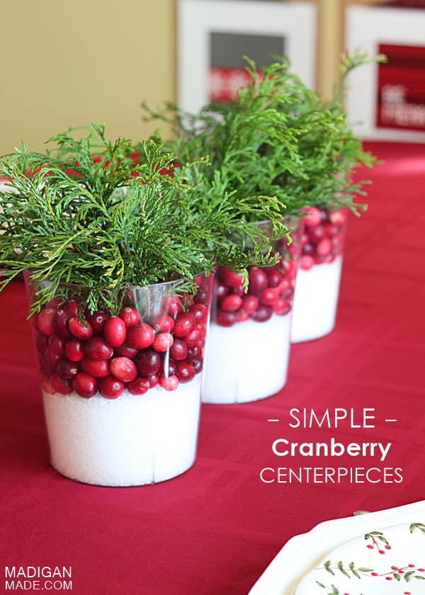 cranberry-christmas-decorations-3