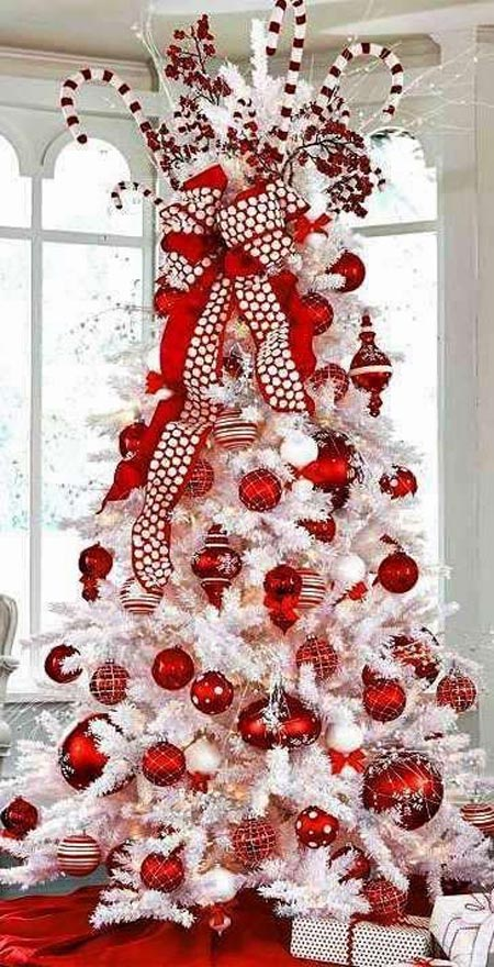 most-beautiful-christmas-trees-10