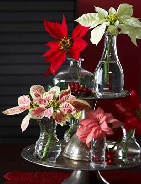 natural-christmas-decorations-10